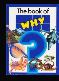 Giuseppe Zanini: The book of WHY